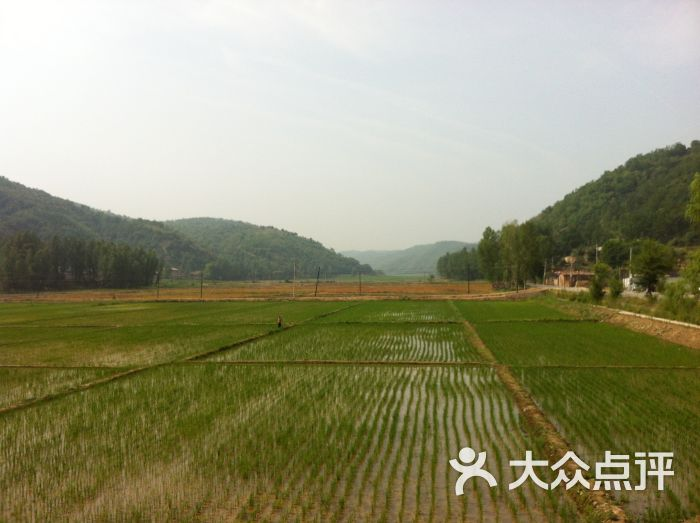 南泥湾风景区南泥湾的稻田图片 - 第191张