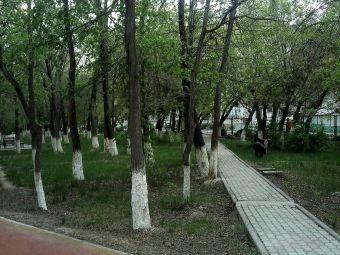 乌鲁木齐市第九十二中学
