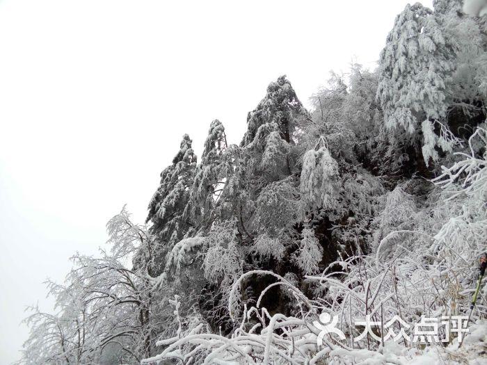 九峰山風景區-圖片-彭州市景點-大眾點評網