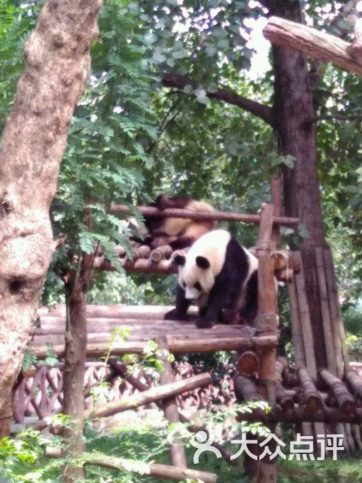 湖公园动物园-图片-马鞍山周边游-大众点评网