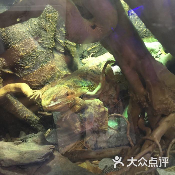 天津zoonly动物主题公园