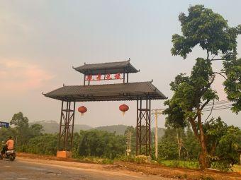 杨梅中心小学