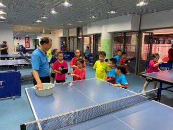 高兴乒乓少儿国球专业培训基地