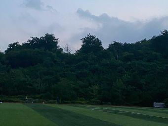 浮山生态园足球场