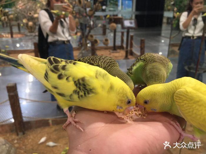 嗒咪动物奇幻乐园(杭州店)图片 - 第132张