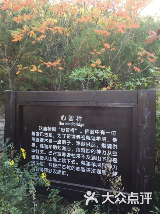 海棠山风景区-图片-阜新蒙古族自治县周边游-大众点评