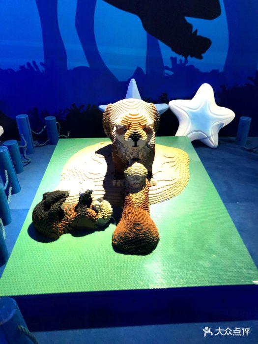 乐高动物王国环保展鸟巢站图片 - 第63张