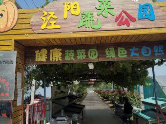泾阳县享优蔬菜合作社