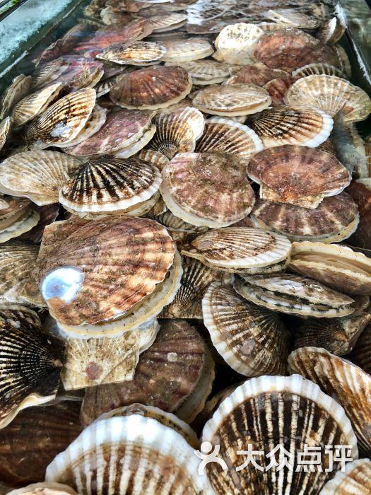 南戴河海滨市场图片 - 第6张