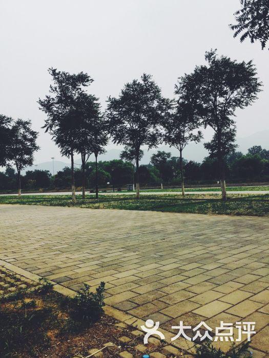 京浪岛公园-图片-北京周边游-大众点评网