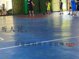 壹号篮球训练营