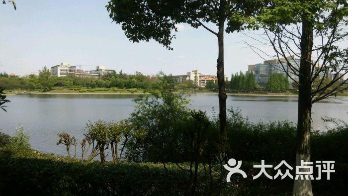 四川大学(江安校区)图片 - 第4张