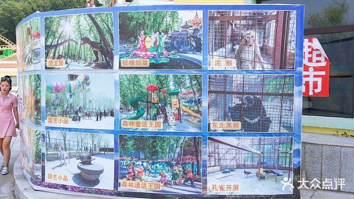 五虎岛游乐园-导游图图片-吉林周边游-大众点评网