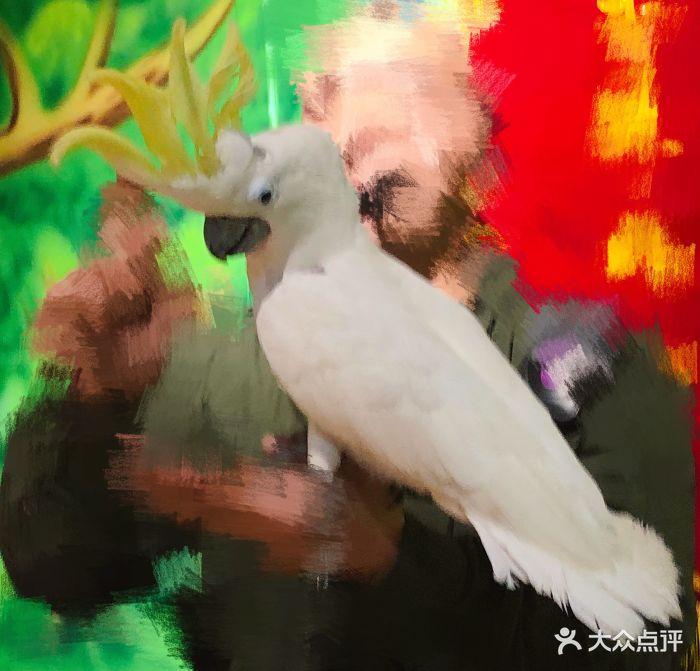 未来动物城主题公园图片 - 第48张