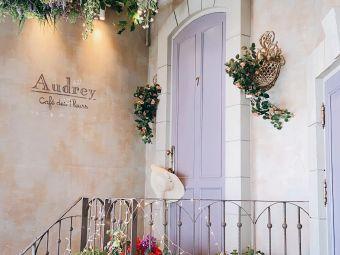 Audrey Cafe