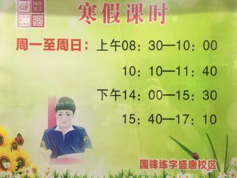 国锋练字(丹尼斯校区)