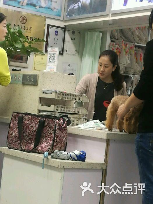张旭动物医院图片 - 第1张