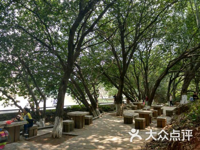 龙头山烧烤-公园纳凉图片-广州美食-大众点评网