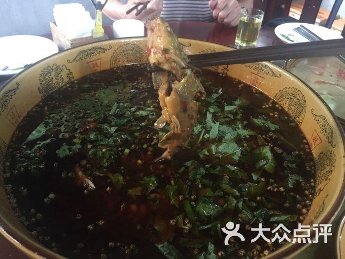 肖坝美食鱼庄-生态-乐山美食-大众点评网慢v美食图片图片