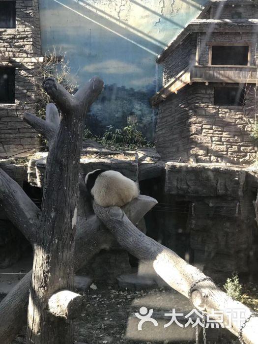 北京动物园图片 - 第3张