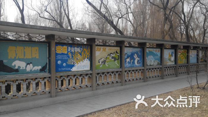 北京动物园貘馆旁边的老长廊图片 - 第14999张
