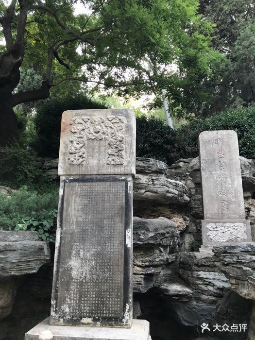 背后界小学生的逛完感悟年级:北京故宫数学.课本吃货小学位置一图片