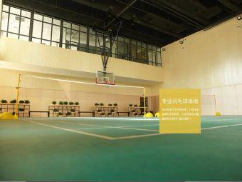 惠靈頓羽毛球培訓