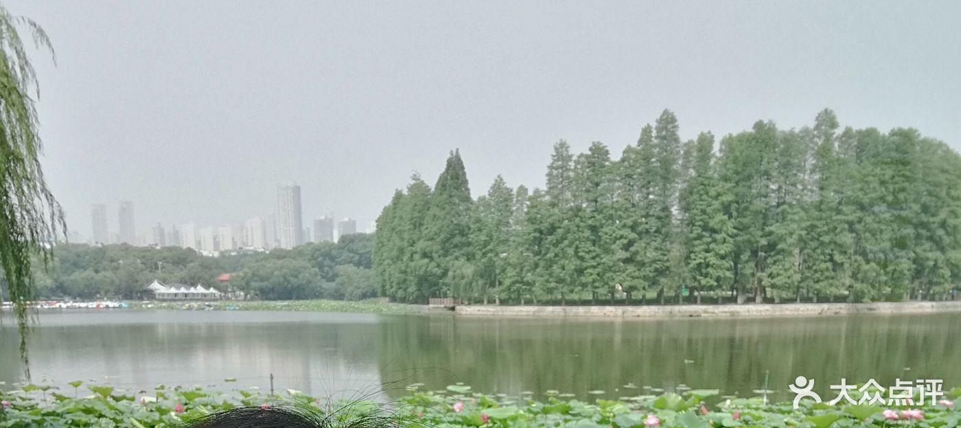 东湖生态旅游风景区-图片-武汉周边游-大众点评网