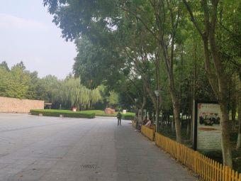 名人广场购物中心-停车场