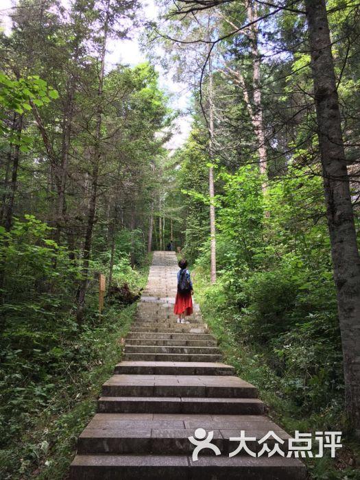朗乡达里石林风景区-图片-铁力市周边游-大众点评网
