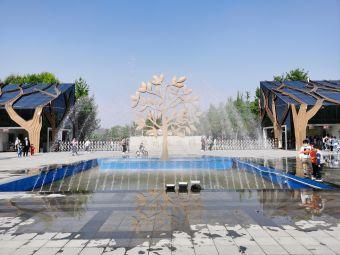 郑州植物园-停车场