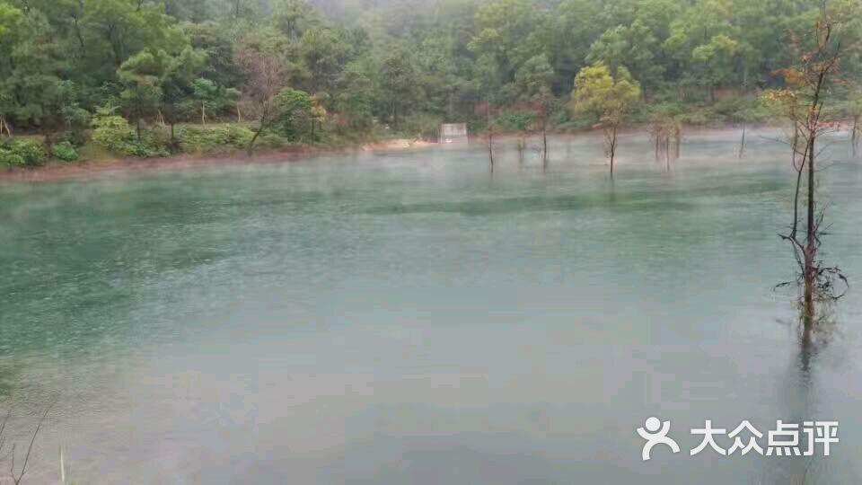 仙玉湖-图片-鹤山市周边游-大众点评网