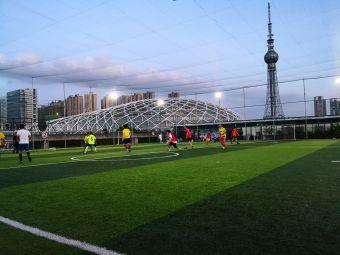 禅城区体育中心-足球场