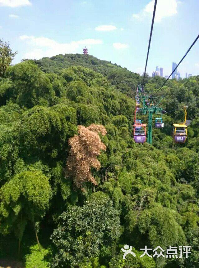 惠山国家森林公园图片 - 第4张