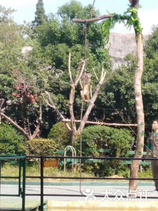 南昌新动物园图片 - 第30张