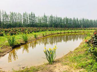长兴岛郊野公园拓展部