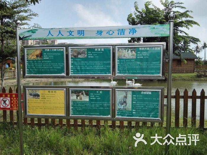 海口天鹅湖动物乐园图片 - 第11张
