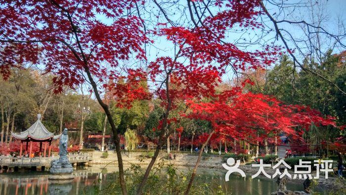 棲霞山名勝風景區圖片 - 第5張