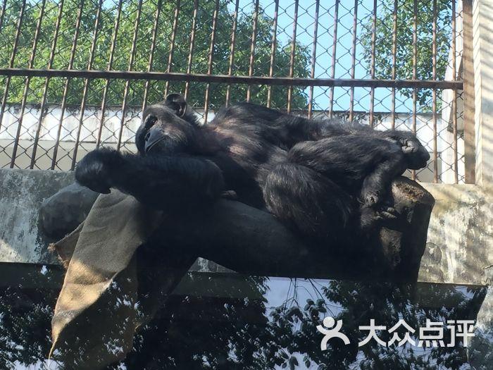 温州动物园图片 - 第286张