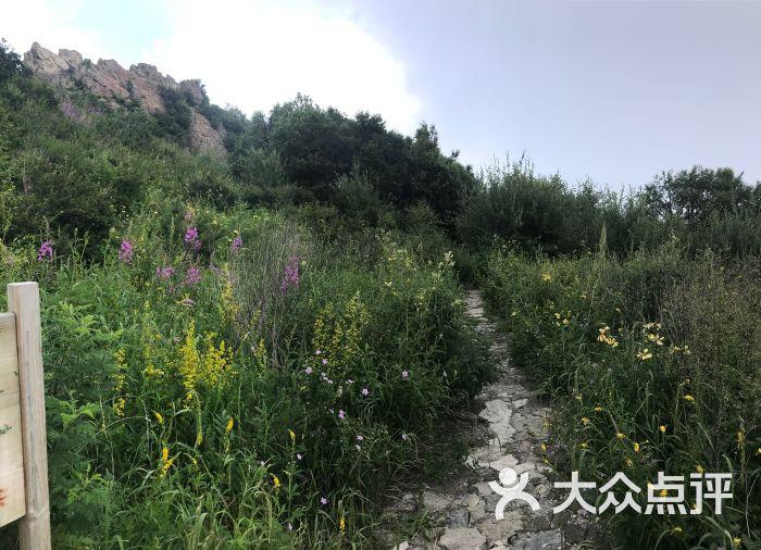 百花山风景区图片 - 第1张