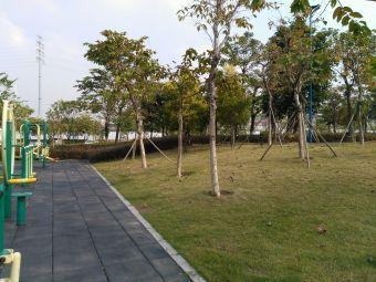 陈村玉带体育公园-足球场