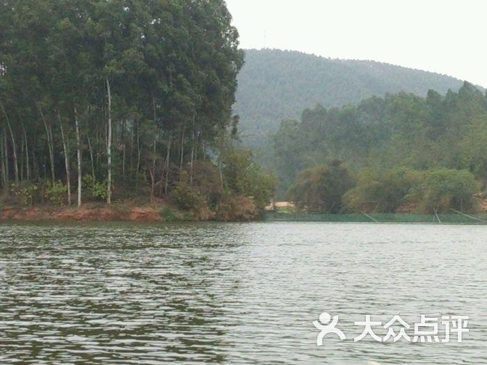 金沙湖风景区-图片-南宁周边游-大众点评网