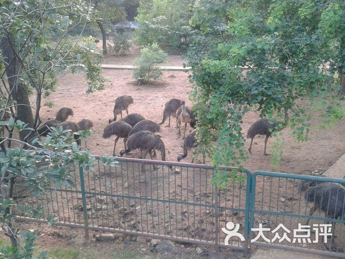 柳州市动物园-图片-柳州周边游-大众点评网