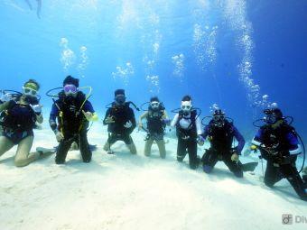 山海鲸潜水俱乐部