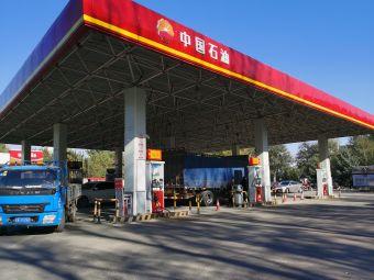 中国石油(金鑫街店)