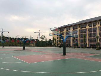 棠湖中学新校区