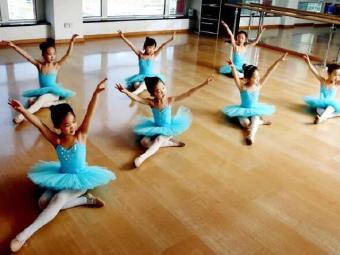 小百合舞蹈艺术中心