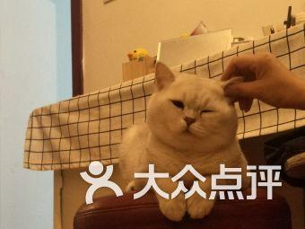 心之宠宠物诊所