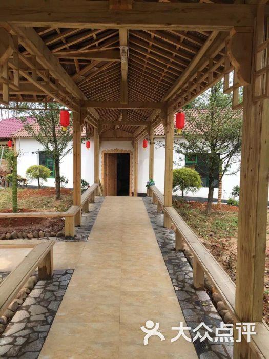沙泰庄-特色-龙游县图片-大众点评网美食美食地方都江堰什么有图片
