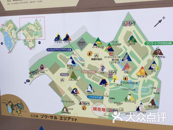 上野动物园图片 - 第11张